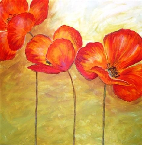 Poppies - Click to make an enquiry