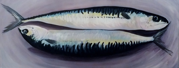 Mackerel2 - Click to make an enquiry