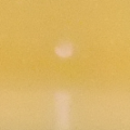 sunrise (small)